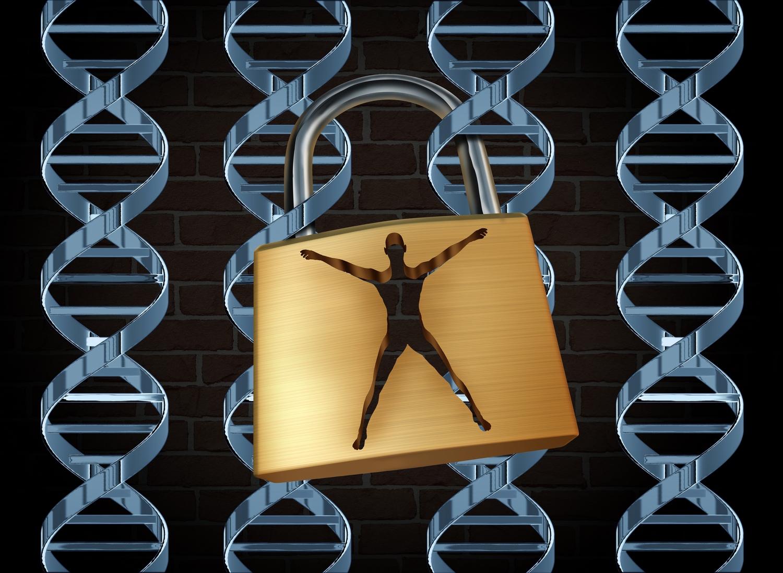genetikai rák brca)