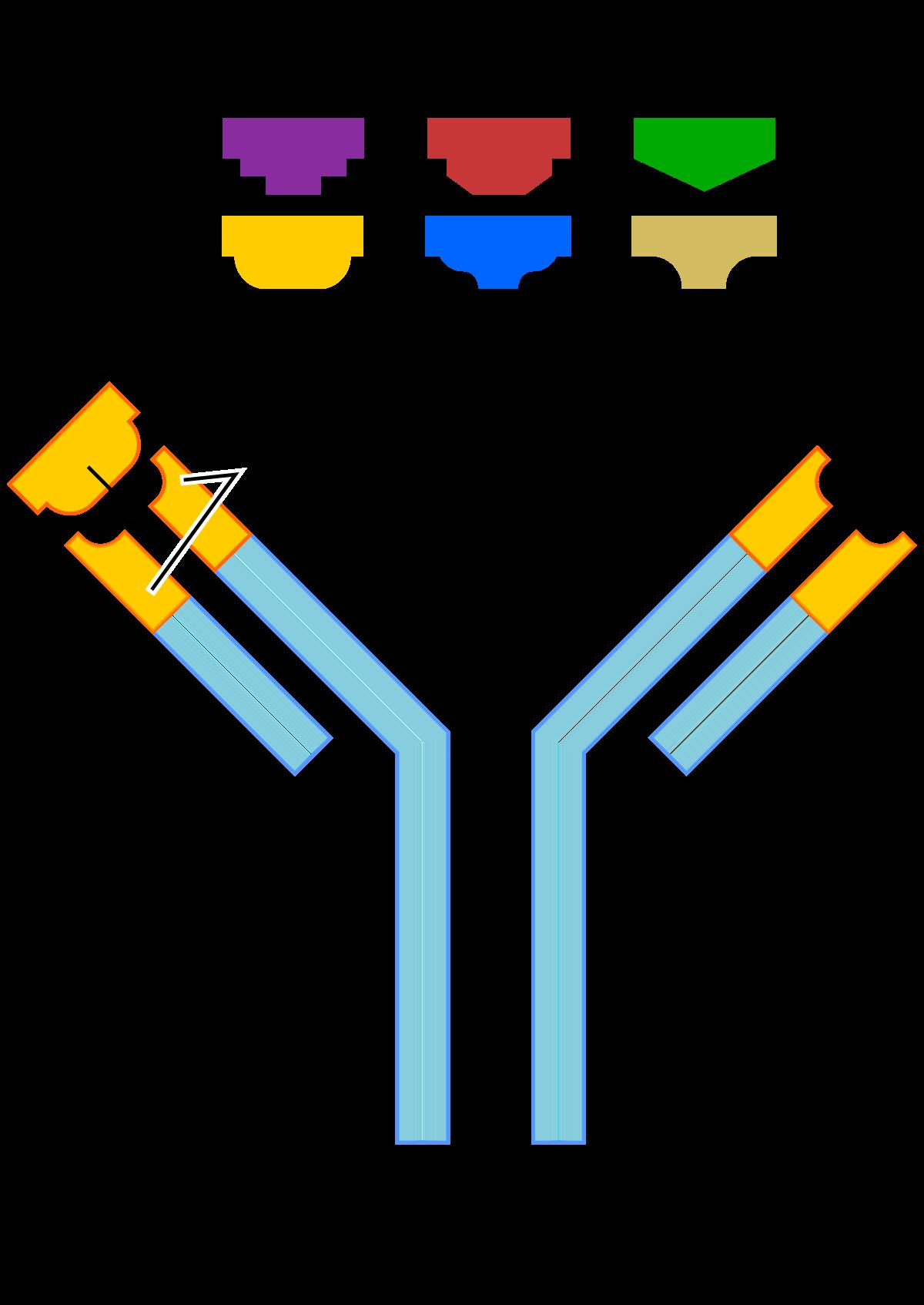 Termék   Page 4   bioMérieux