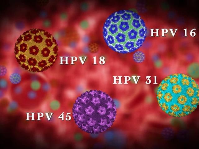 rosszindulatú humán papillomavírus 16