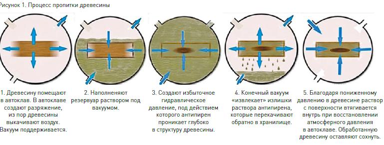 Hogyan lehet eltávolítani a fa tetű a fürdőszobából: a leghatékonyabb ellenőrzési módszerek