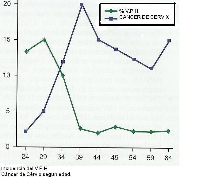 papilloma vírus veneto régiója parazita fertőzés kezelése