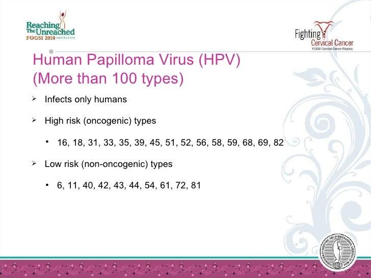 humán papillomavírus 7