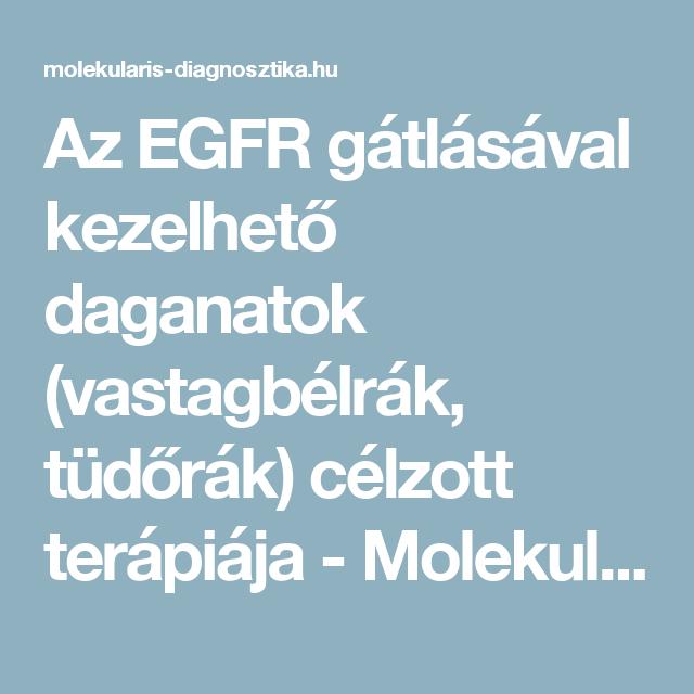 Magyar Orvosi Kamara - Harc a néma gyilkos, a vastag-, és végbélrák ellen