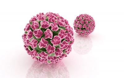torokrák emberi papillomavírusból