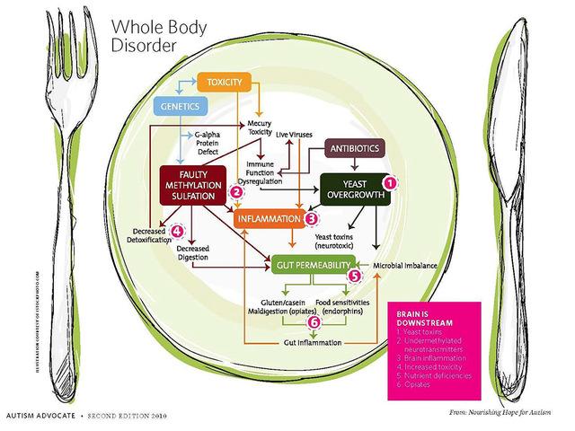 dysbiosis étkezési rendellenességek