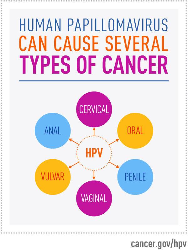 hpv vírus és leep eljárás)