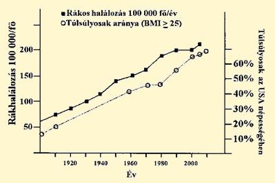 hasi rák túlélési aránya)