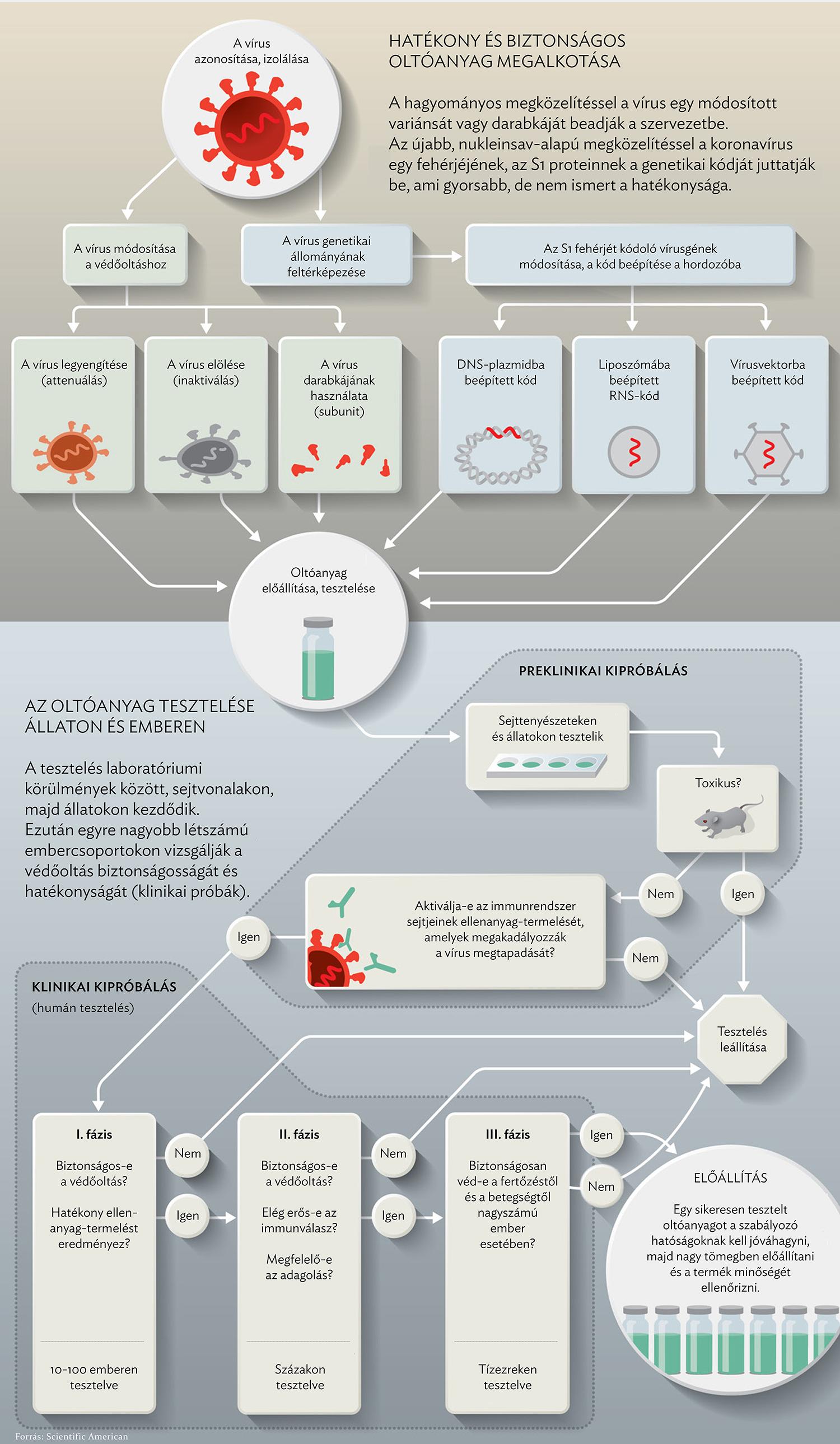 HPV vírus elleni védőoltás