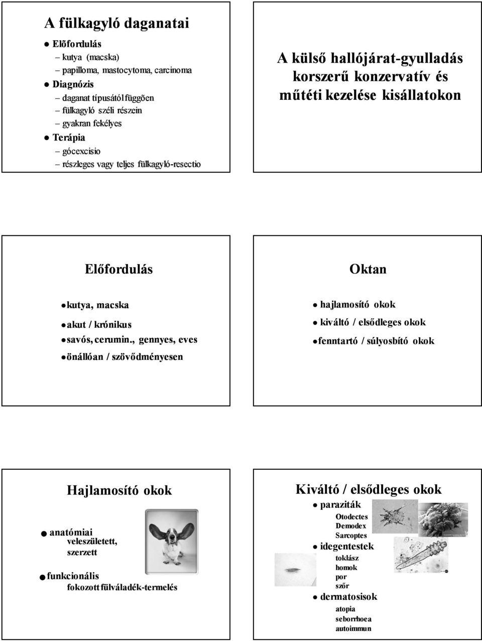 légúti papillómák)