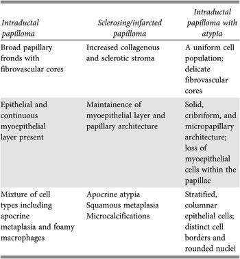 Intraductalis papilloma az emlőben okok – Symptoma