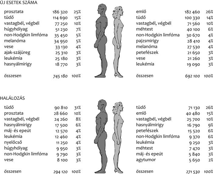 A nyirokcsomók tünetei, stádiumai és kezelése - Carcinoma