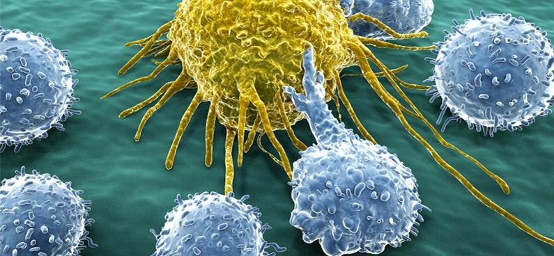 gyomorrák és immunterápia)