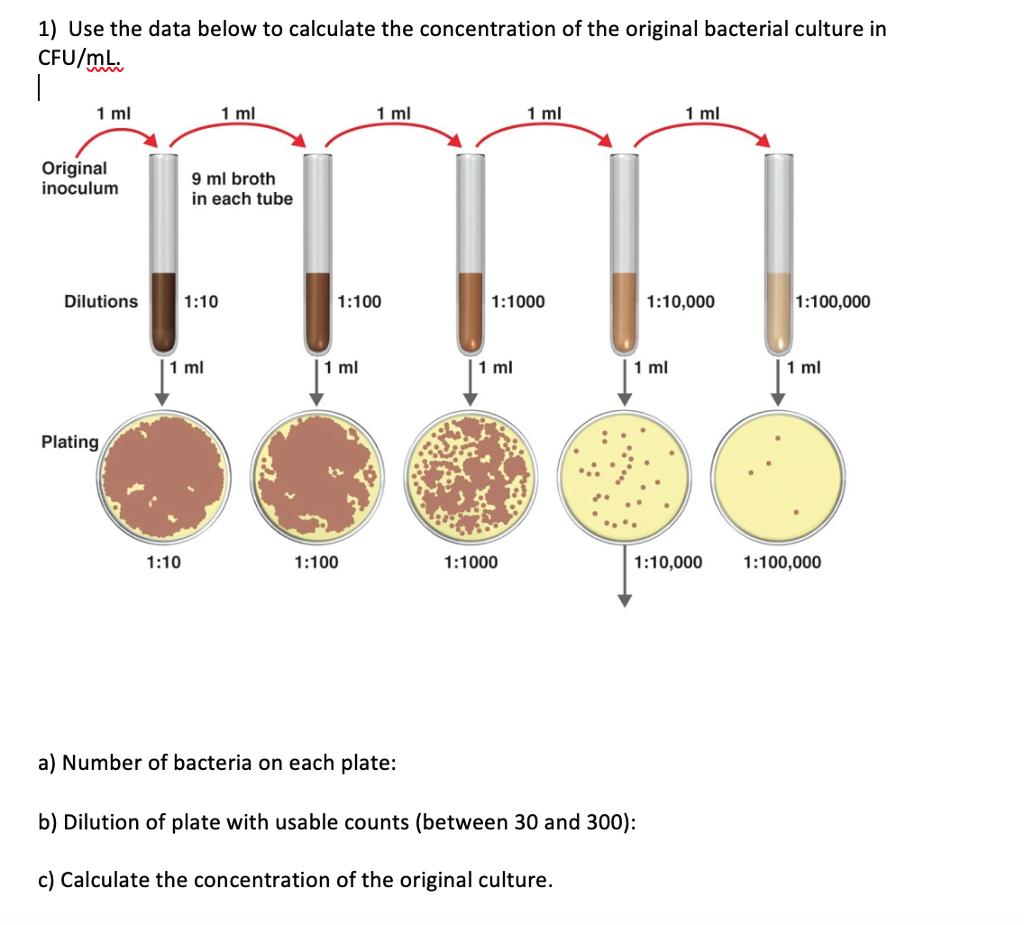 bakteriuria 1000 cfu ml)