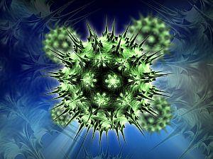 hpv és fejrák helminthosporium maydis