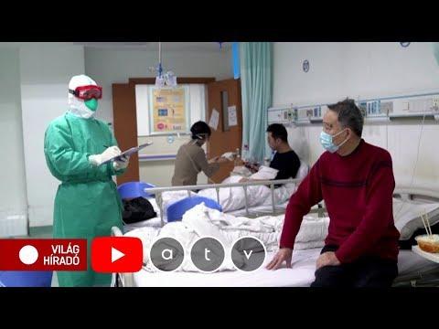Wartner szemĂślcsfagyasztĂł 50ml - Arany KĂgyĂł Patika - gajaliget.hu - Online Patika