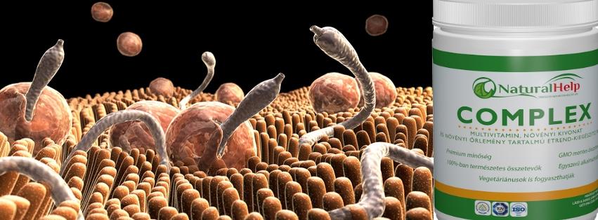 Paraziták - mit érdemes tudni róluk?