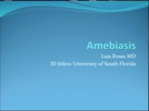 Giardiasis amoebiasis. Entamoeba histolytica lecture giardia outbreak nz