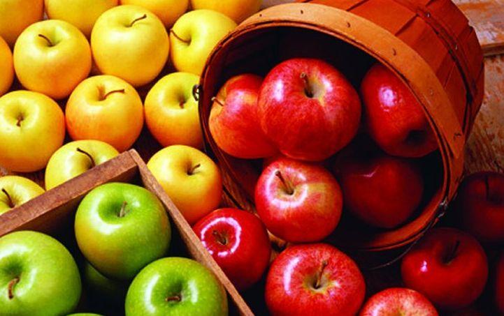 Támogatás igényelhető a fűtött növény- és gombaházakra - FruitVeB