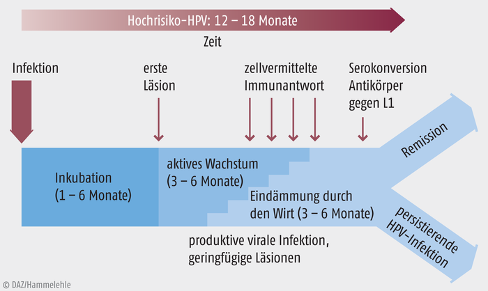 hpv impfung wirkung)