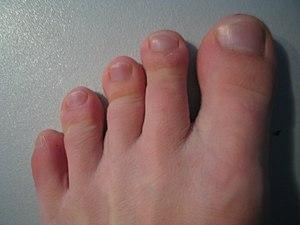 lábujjak
