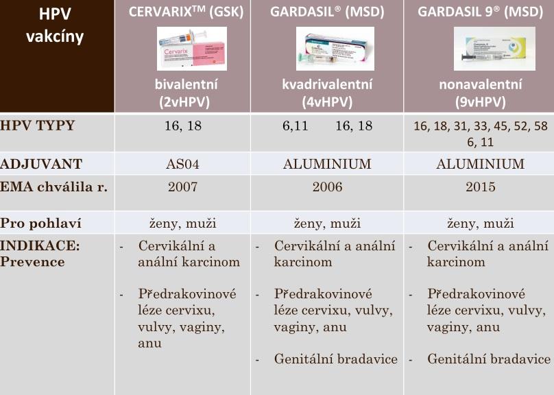 Provakcinační politika