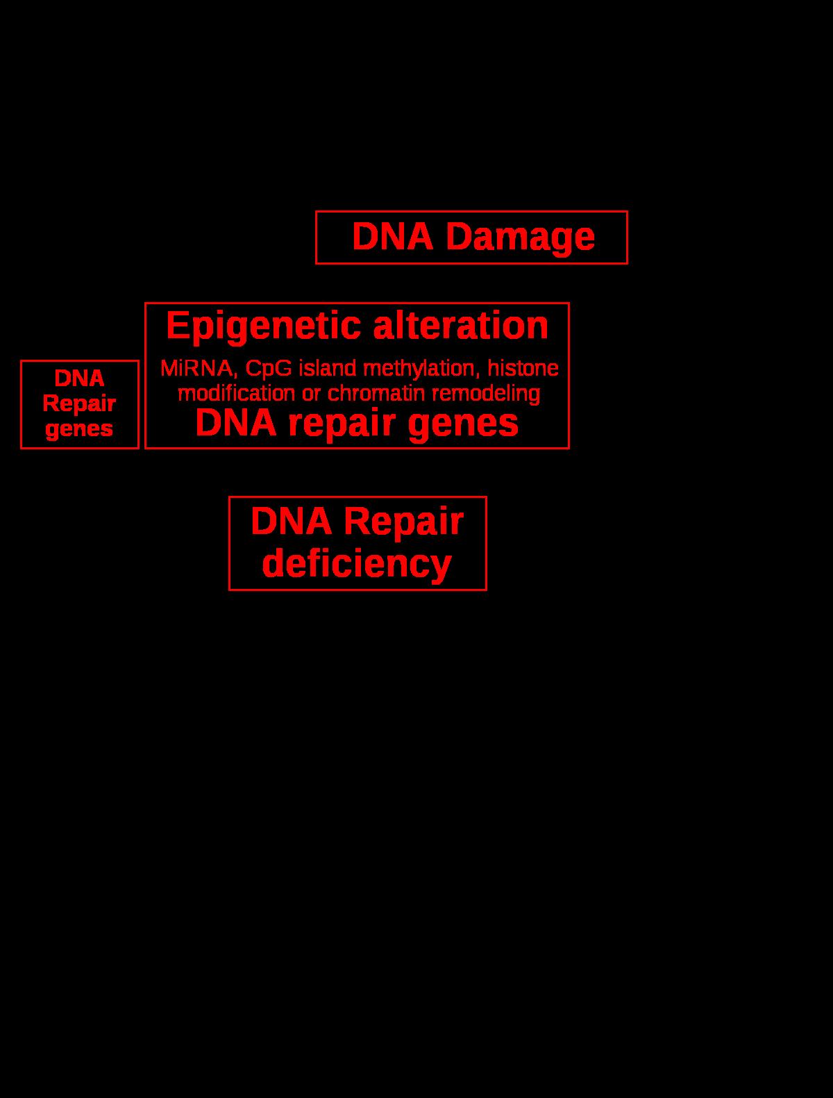 a rák nem genetikai